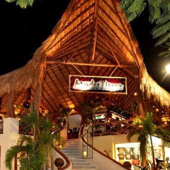 madre-tierra-playa-del-carmen-restaurante-reservandonos