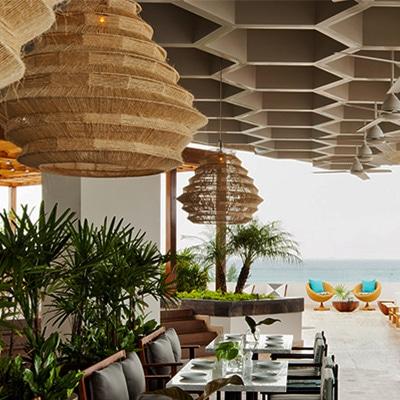 Cinco Playa del Carmen Restaurante Reservaciones reservandonos App