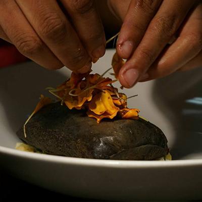 Raíz Restaurante CDMX reservandonos