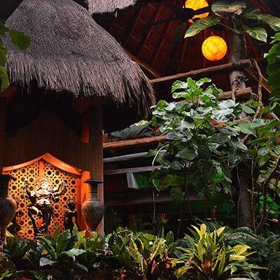 Restaurante Elefanta Cancún La Isla Reservas