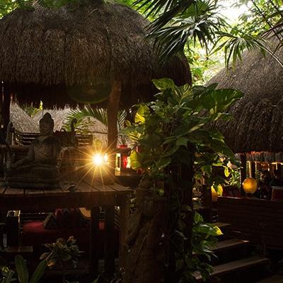 Thai Cancún La Isla Reservas reservandonos App