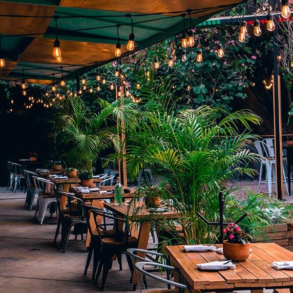 bondades de los mejores restaurantes en cdmx con terraza